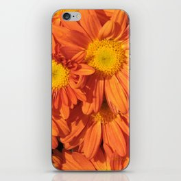 Petals a L'orange iPhone Skin