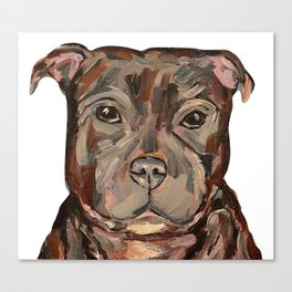 Sallie the dog Canvas Print