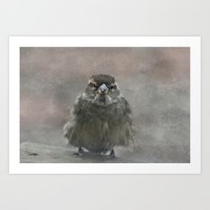 On A Cold Winters Day Art Print