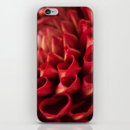 Red Dahlia Photography Print iPhone Skin