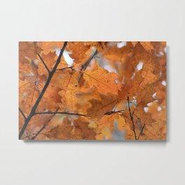Burnt Gold Leaves Metal Print