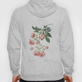 Rosa Multiflora Hoody