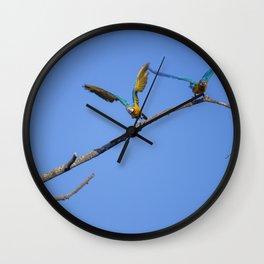 Birds from Pantanal Arara canindé, juntos é bem melhor Wall Clock