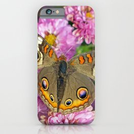 Common Buckeye Butterfly iPhone Case