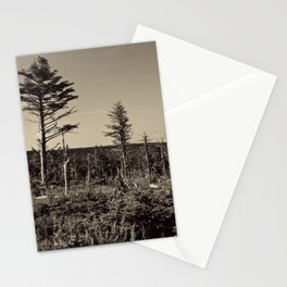 old trees on the hillside Stationery Cards