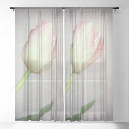 Lovely Tulip Sheer Curtain