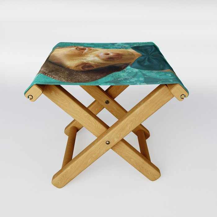 PHiNEAS TWiST (more please sir...) Folding Stool