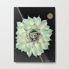 Sempervivum Eye 02 Metal Print