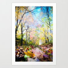 Amongst the Leaves Art Print