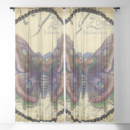 Vintage Purple Butterfly Sheer Curtain