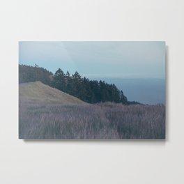 Mountain Side Views Metal Print