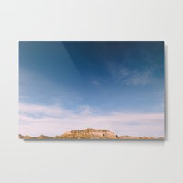 Texas Eagle Horizon II Metal Print