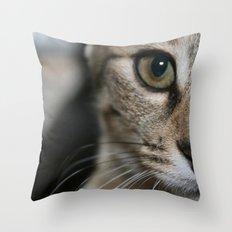 Eye of a Tiger... Throw Pillow