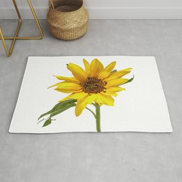 Small sunflower on a white background, bright yellow highly detailed. Rug