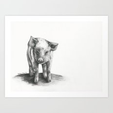 Lost Piggy Art Print