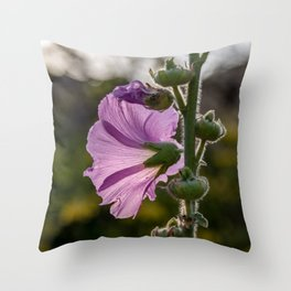 Pirple flower on sunset Throw Pillow