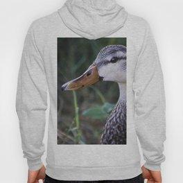 Mottled Duck Hoody