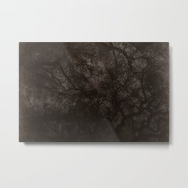 Nocturne Metal Print