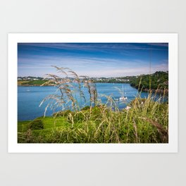 View of Kinsale, Ireland from Summer Cove Art Print