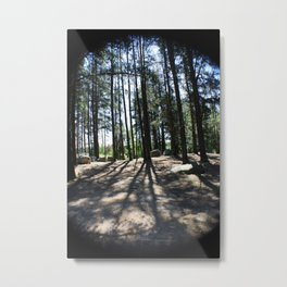 Abitibi Nature29 Metal Print