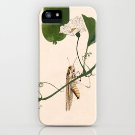 Grasshopper on Gourd Vine iPhone Case