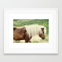pony Framed Art Prints featuring Pony by angela haugland