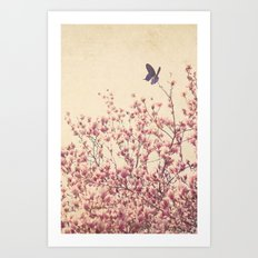 Butterfly and Pink Blossoms Art Print