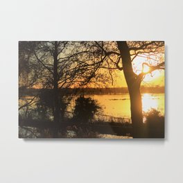 Floodplain at Sunset 2 Metal Print