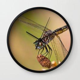 Summer Visitor Wall Clock