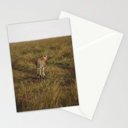 Cheetah Trail Stationery Cards