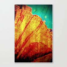 A small but very important piece of nature Canvas Print