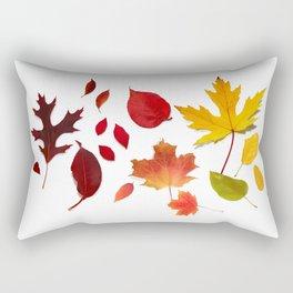 Autumn Rainbow, Fallen Leaves Rectangular Pillow