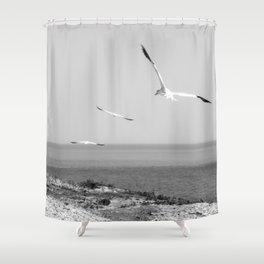 Fou de Bassan 1 Shower Curtain
