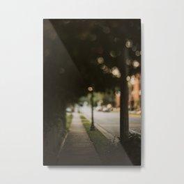 Evening Walks Metal Print