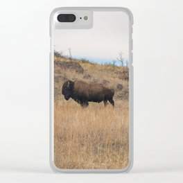 Stand Steady Clear iPhone Case
