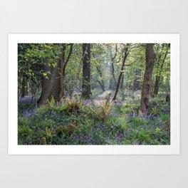 Spring Glade Art Print