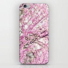 Purple Bud iPhone & iPod Skin
