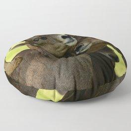 Desert Bighorn Rams 4299 - Closeup Floor Pillow