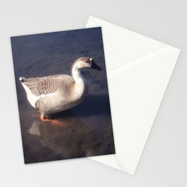 Honk Stationery Cards