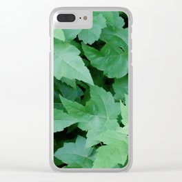 Settled Clear iPhone Case