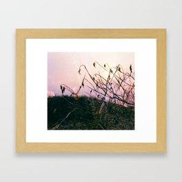 centralia 5 Framed Art Print