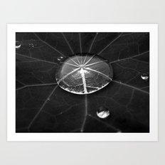 water drop XIV Art Print