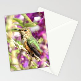 Lady Allen's Stationery Cards