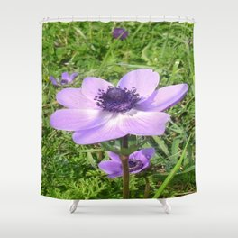 One Delicate Pale Lilac Anemone Coronaria Wild Flower Shower Curtain