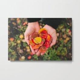 Fall Aspen Leaves Metal Print