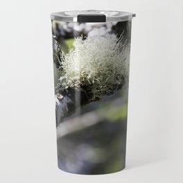 A tuft of moss on a Birch tree Travel Mug