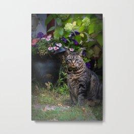 Oliver Posing Metal Print