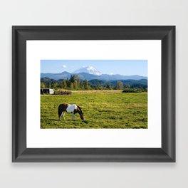 Paint Horse and Mount Rainier Framed Art Print