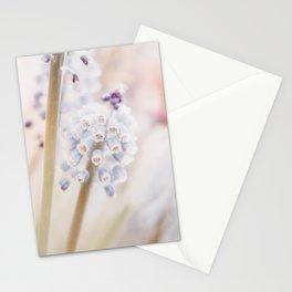Muscari Art Print | Flower Photography | Atmospheric Grape Hyacinth Close-up Stationery Cards