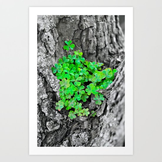 clover-cluster447165-prints.jpg